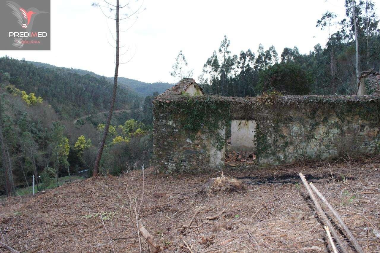 Quintas e herdades para comprar, Aguda, Figueiró dos Vinhos, Leiria - Foto 40