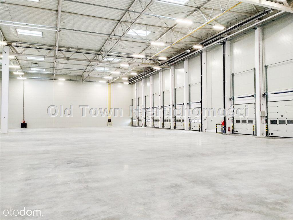 Hala magazynowa klasy A Niemce od 1350 m2