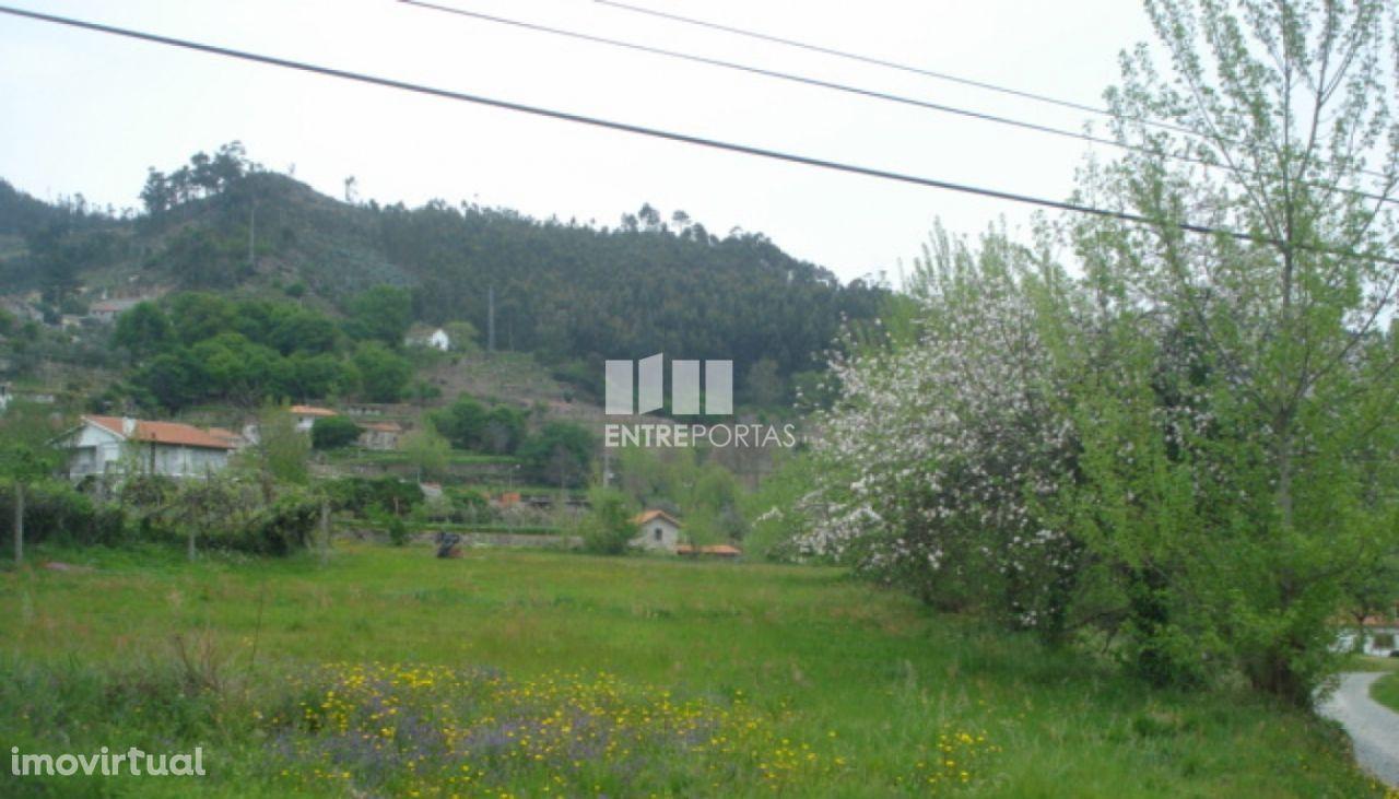 Venda Terreno, junto à estrada, Penha Longa, Marco de Canaveses