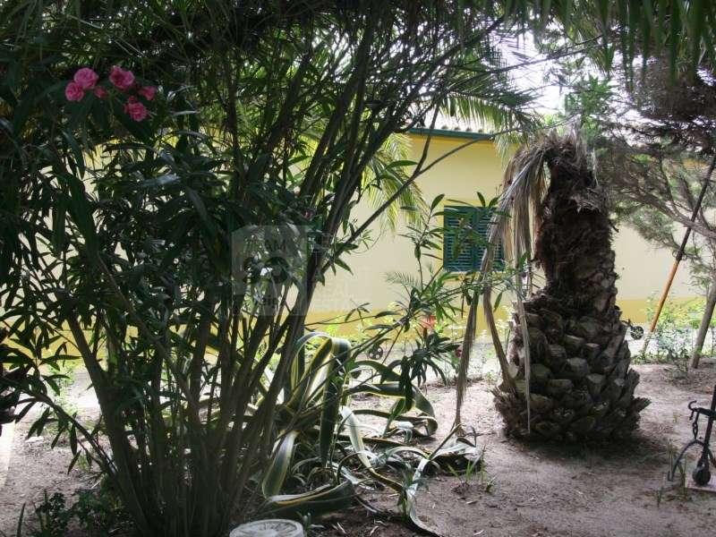 Terreno para comprar, Pinhal Novo, Setúbal - Foto 59