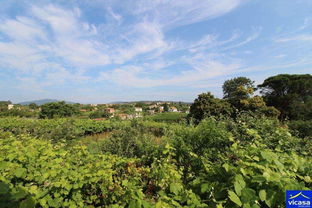 Quintas e herdades para comprar, Argela, Viana do Castelo - Foto 3