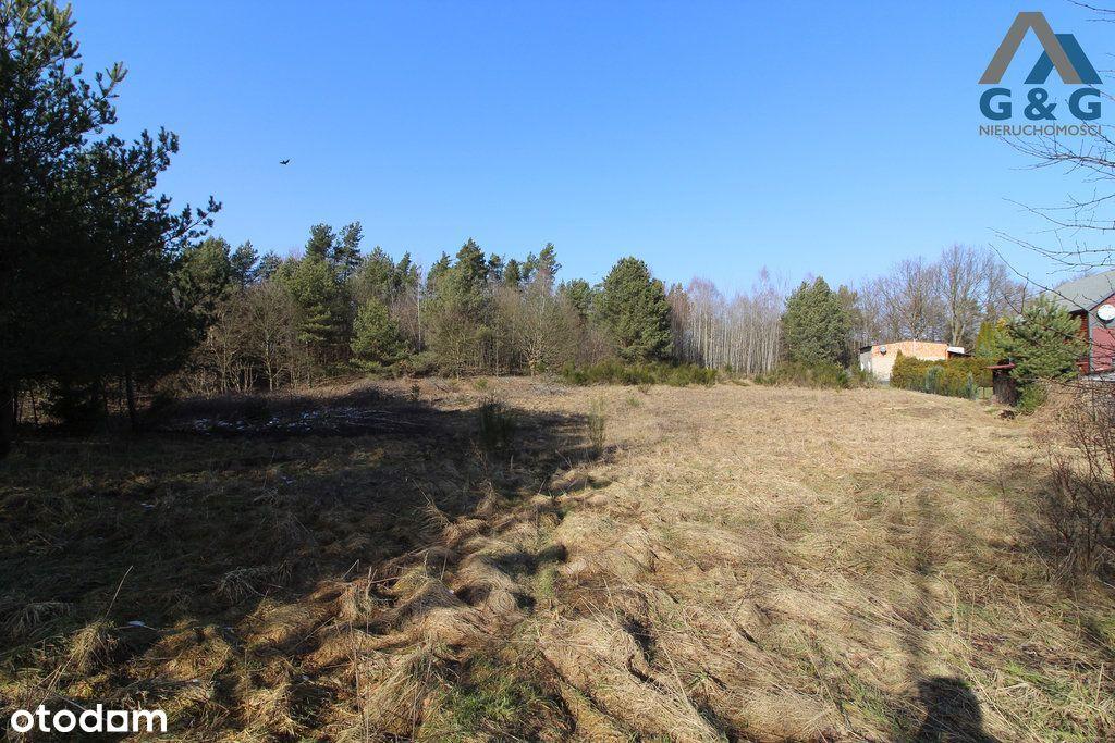 Działka pod lasem w Gdyni z Mpzp, możliwy podział