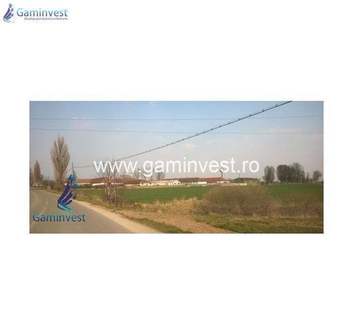 GAMINVEST - Hala industriala de vanzare in Bors, Bihor V1618