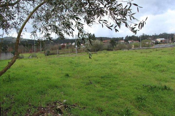 Terreno para comprar, Mortágua, Vale de Remígio, Cortegaça e Almaça, Viseu - Foto 10