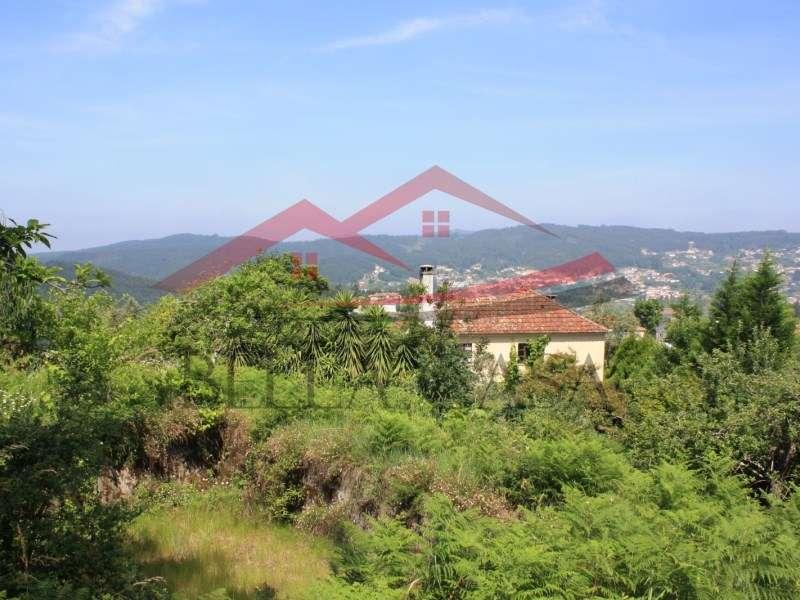 Quintas e herdades para comprar, Cedrim e Paradela, Sever do Vouga, Aveiro - Foto 6