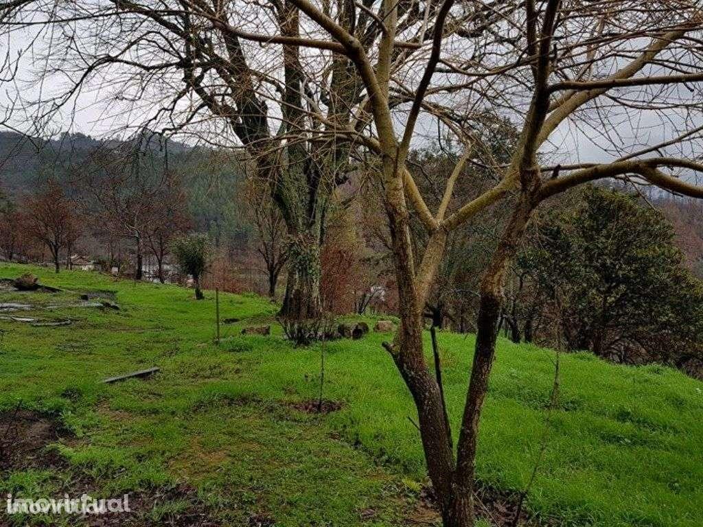 Quintas e herdades para comprar, Bem Viver, Marco de Canaveses, Porto - Foto 8