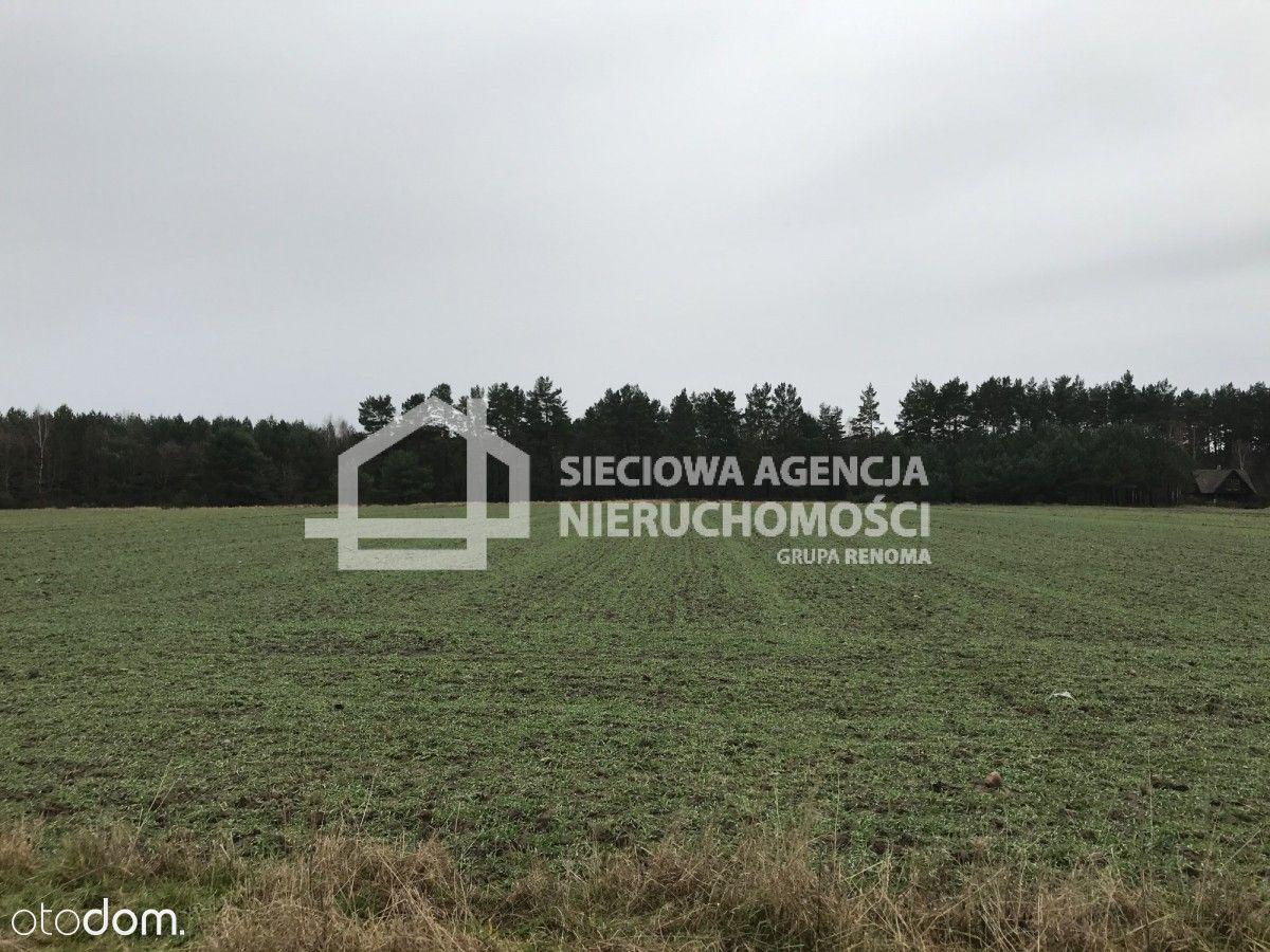 Działka 1,21ha w nadmorskim Sasinie/blisko Łeby!