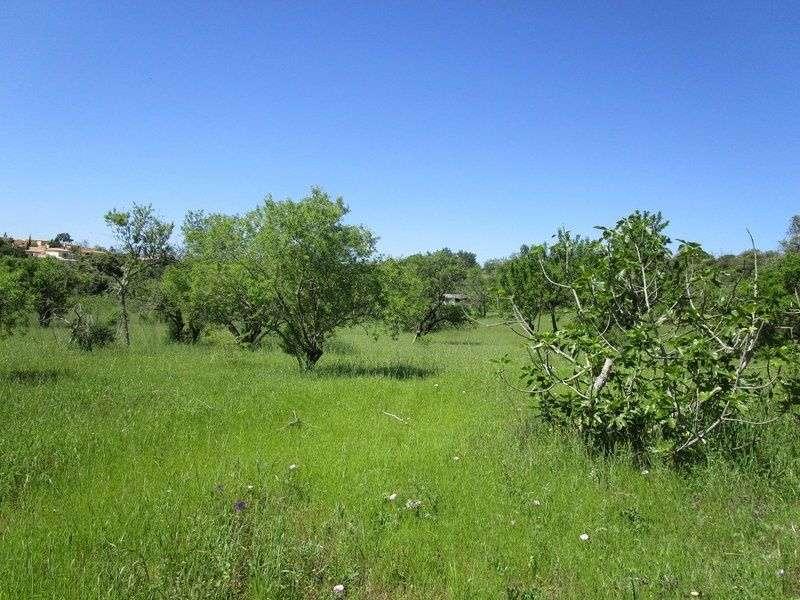 Quintas e herdades para comprar, Estômbar e Parchal, Lagoa (Algarve), Faro - Foto 12