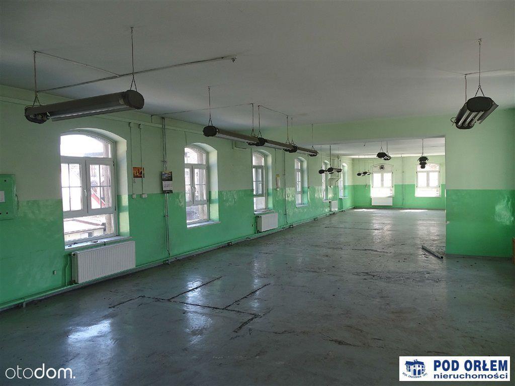 Lokal użytkowy, 3 120 m², Bielsko-Biała