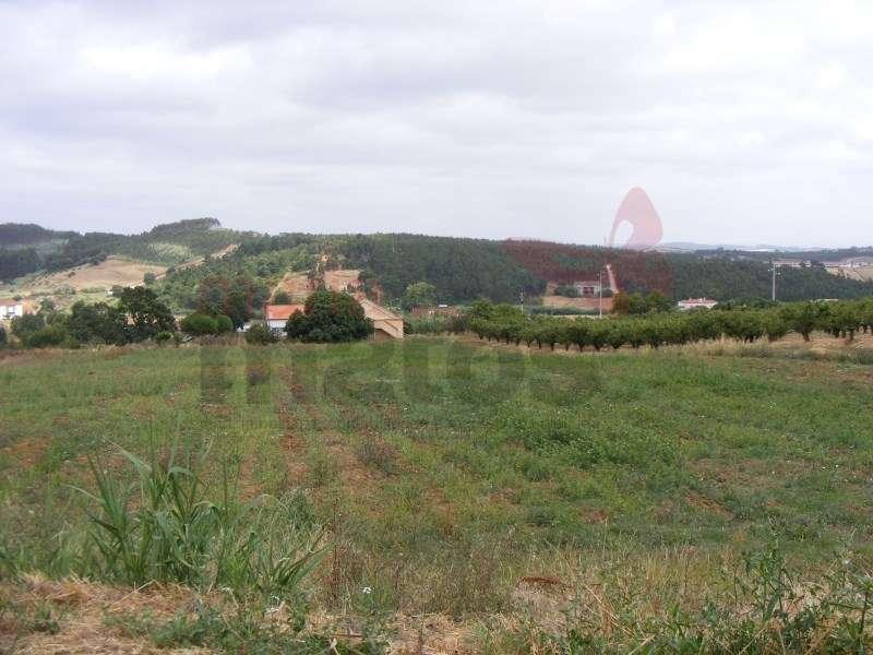 Quintas e herdades para comprar, Lourinhã e Atalaia, Lourinhã, Lisboa - Foto 36