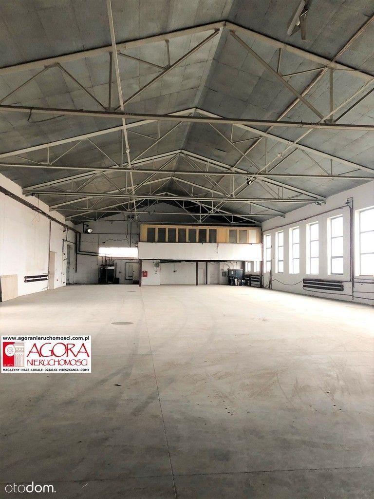 Hale Produkcyjne/Magazynowe 800 i 300 m2 240kW 5m
