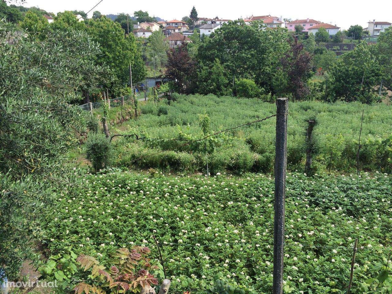 Terreno para comprar, Sande, Vilarinho, Barros e Gomide, Braga - Foto 3