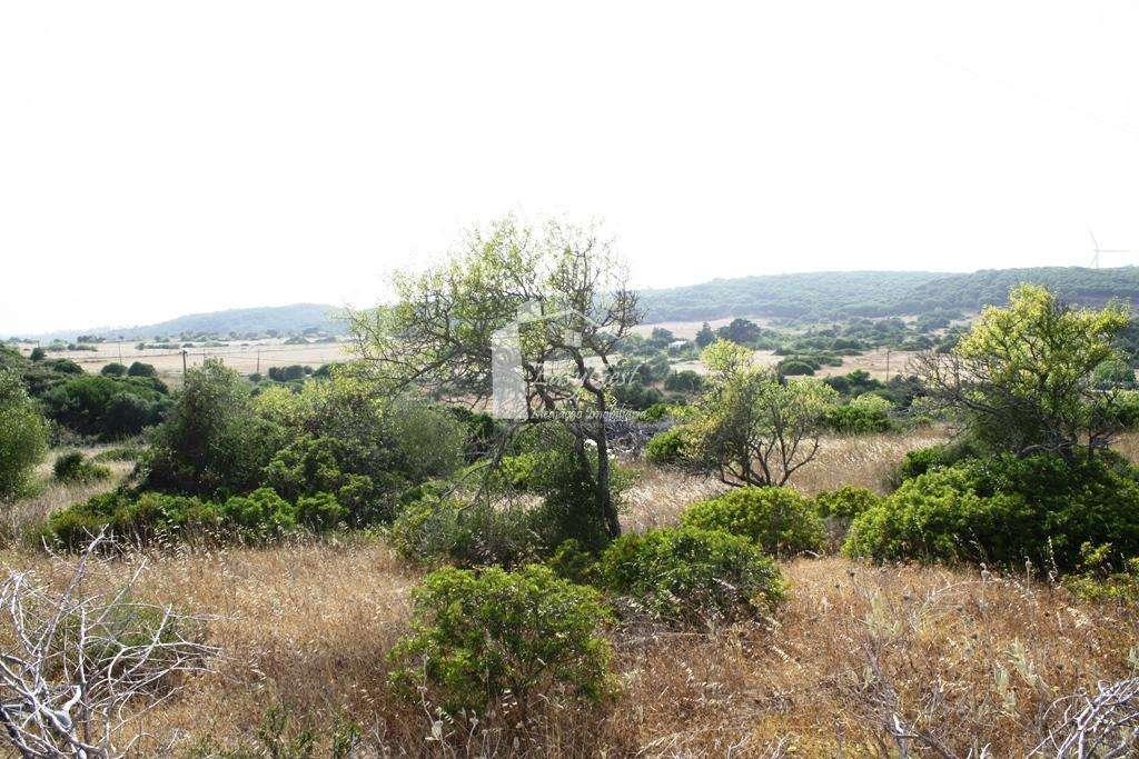 Terreno para comprar, Bensafrim e Barão de São João, Faro - Foto 4