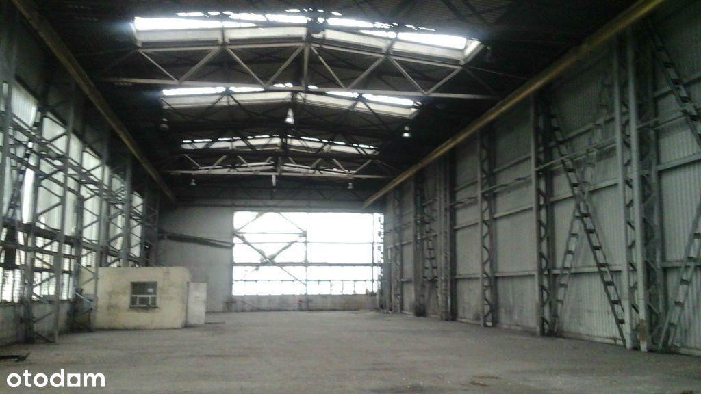 Hala/Magazyn, 1 200 m², Żory