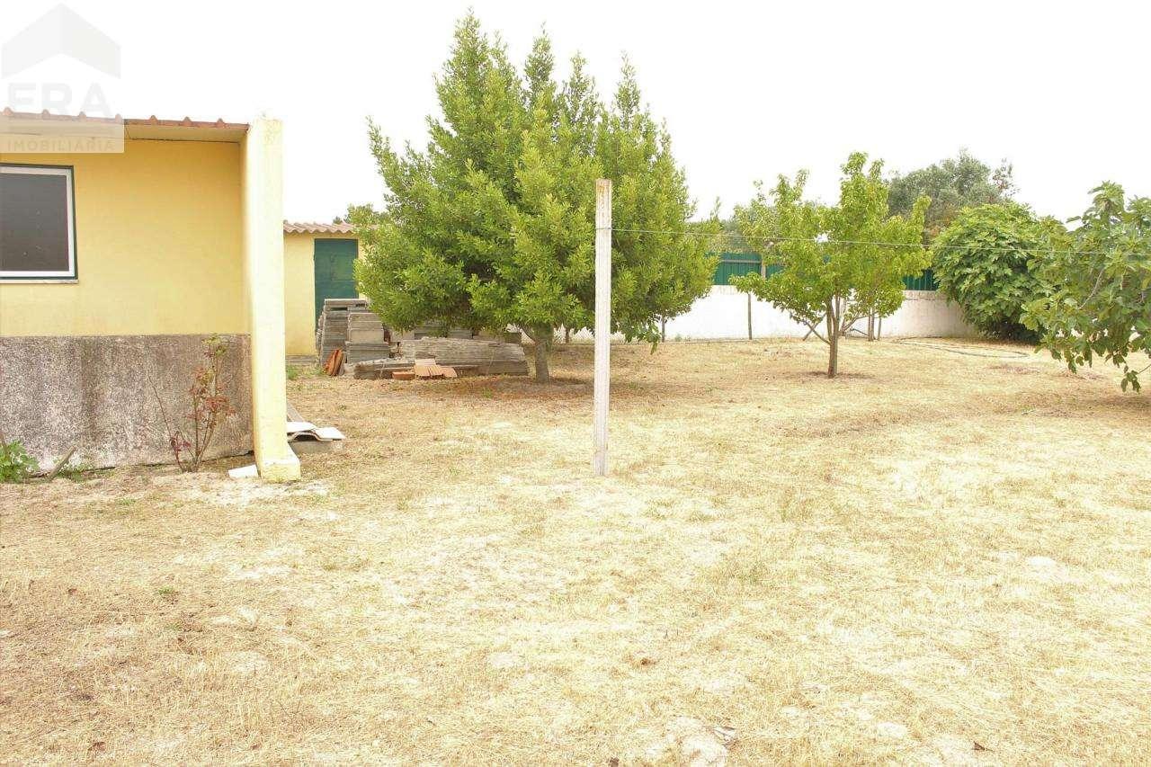 Terreno para comprar, Gâmbia-Pontes-Alto Guerra, Setúbal - Foto 7