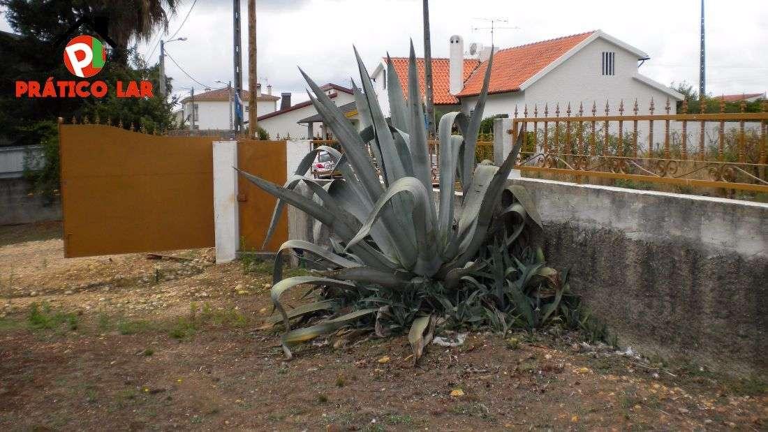 Moradia para comprar, Travassô e Óis da Ribeira, Águeda, Aveiro - Foto 26