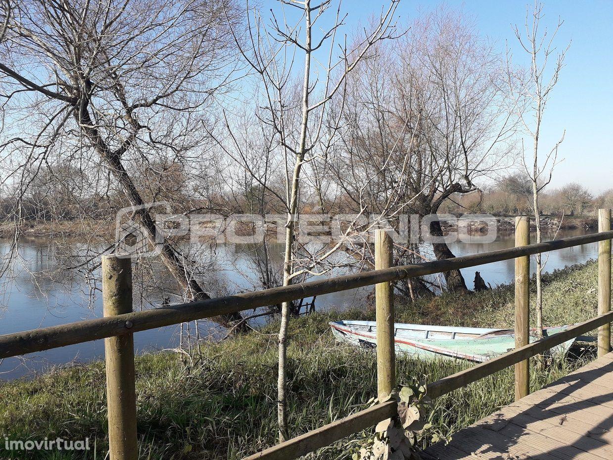 Terreno para comprar, Albergaria-a-Velha e Valmaior, Albergaria-a-Velha, Aveiro - Foto 6