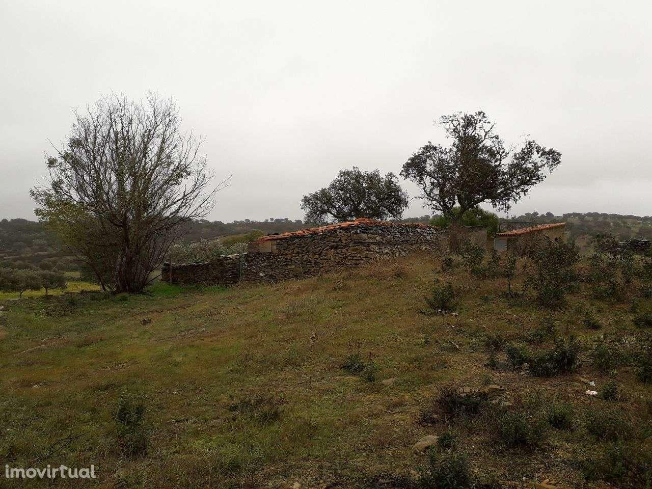 Quintas e herdades para comprar, Almodôvar e Graça dos Padrões, Beja - Foto 12