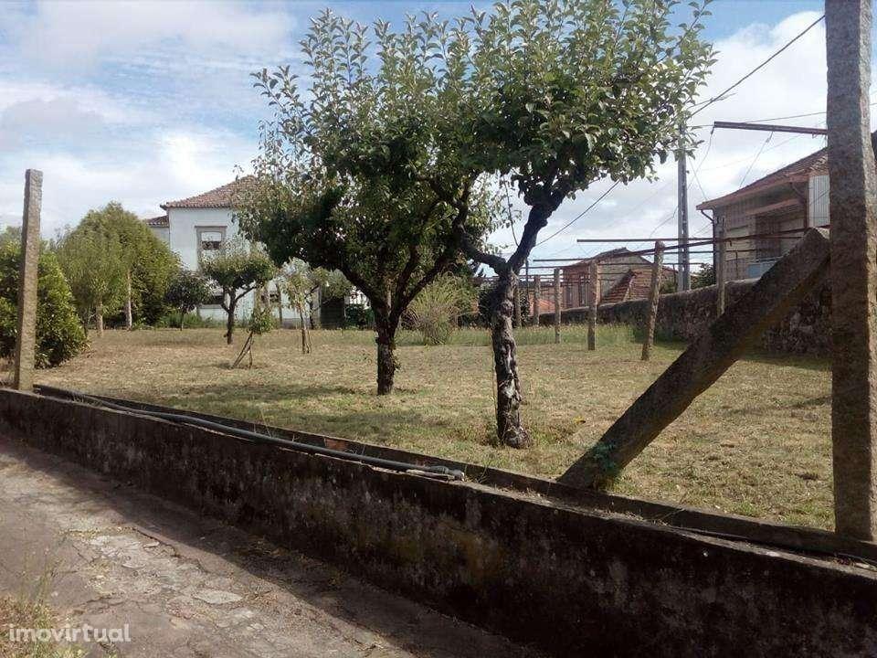 Quintas e herdades para comprar, Fânzeres e São Pedro da Cova, Porto - Foto 21