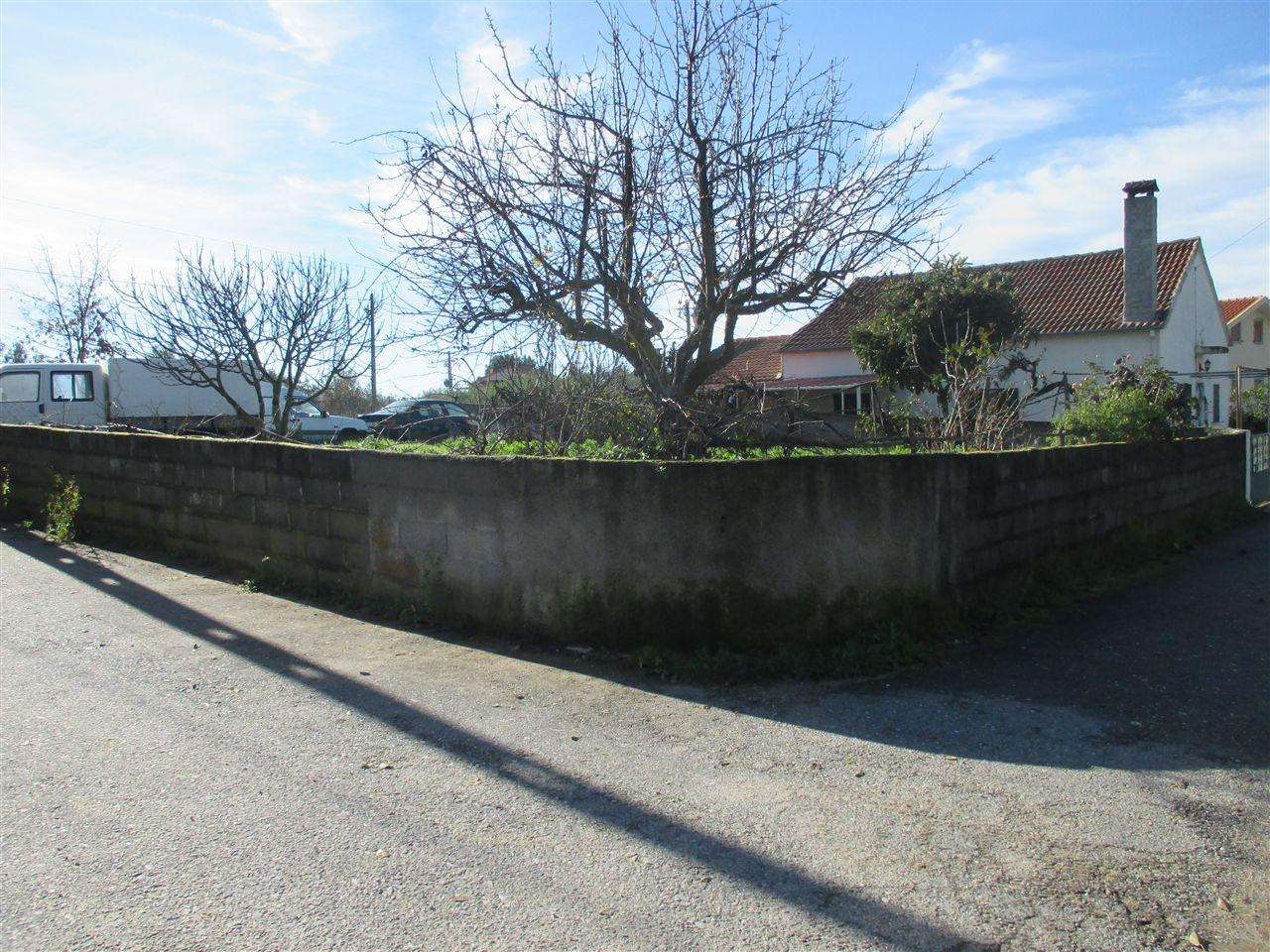Terreno para comprar, Dominguizo, Castelo Branco - Foto 1