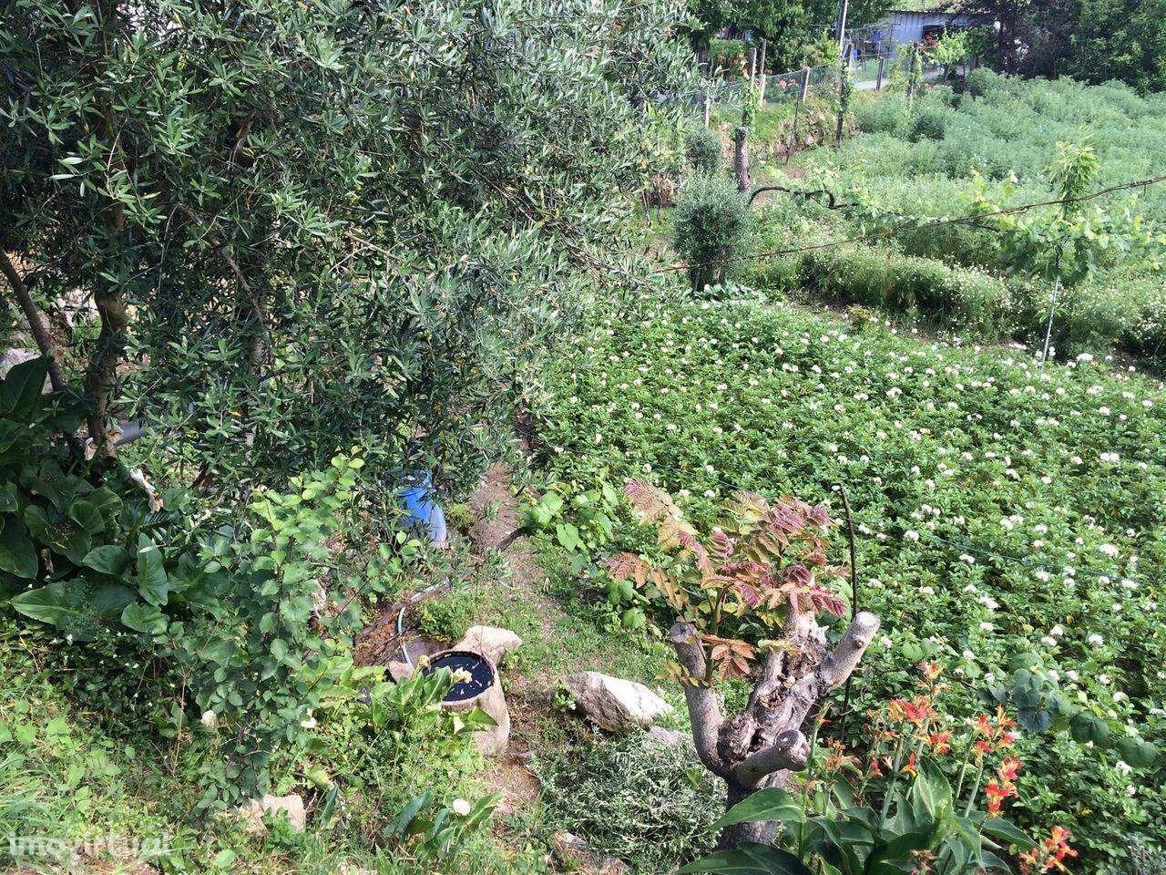 Terreno para comprar, Sande, Vilarinho, Barros e Gomide, Braga - Foto 12