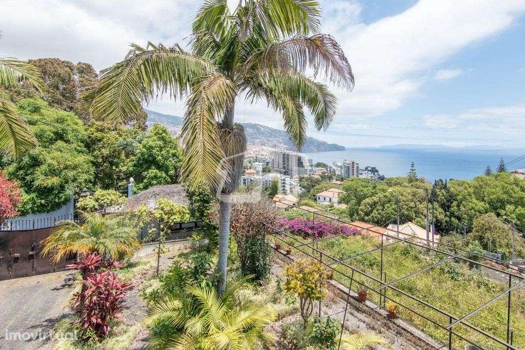 Quintas e herdades para comprar, São Martinho, Ilha da Madeira - Foto 1