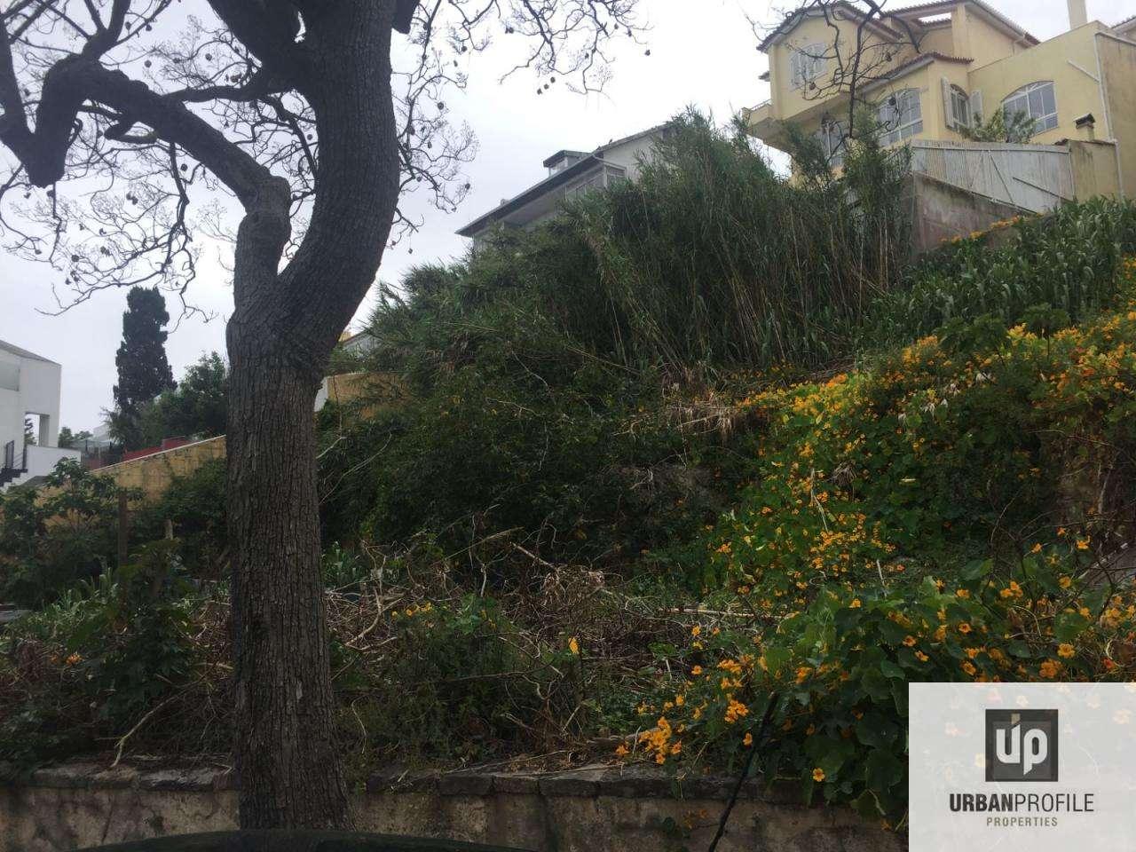 Terreno para comprar, Oeiras e São Julião da Barra, Paço de Arcos e Caxias, Lisboa - Foto 9