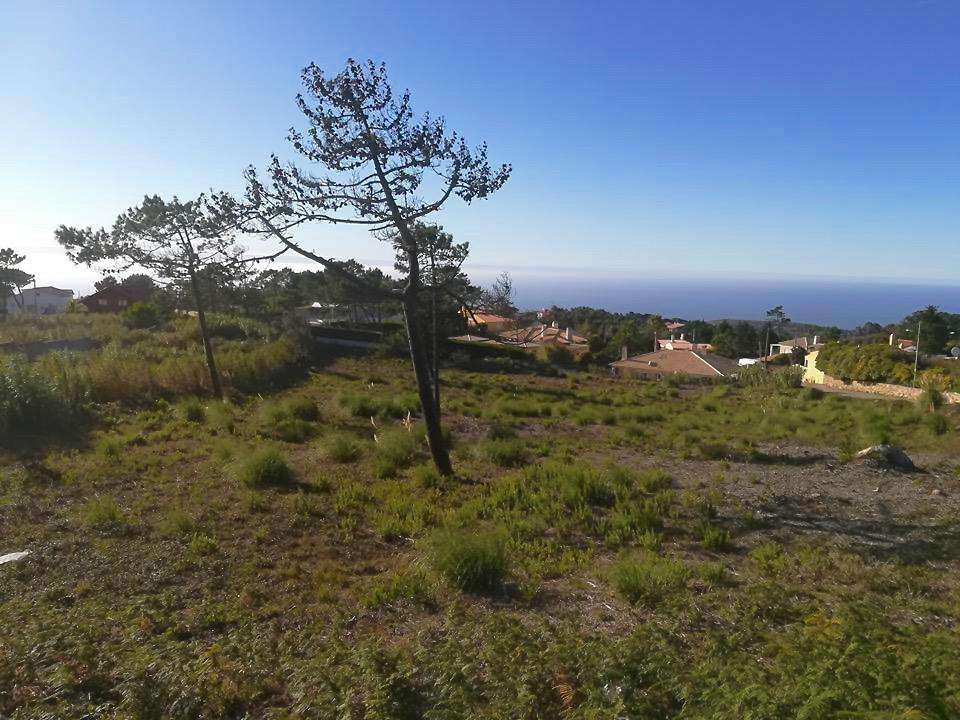 Terreno para comprar, Colares, Sintra, Lisboa - Foto 6