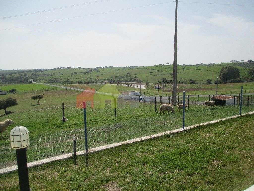 Quintas e herdades para comprar, Corte do Pinto, Mértola, Beja - Foto 12