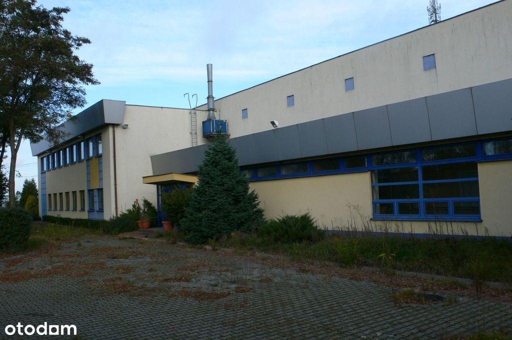 Hala/Magazyn, 1 925 m², Pniewy