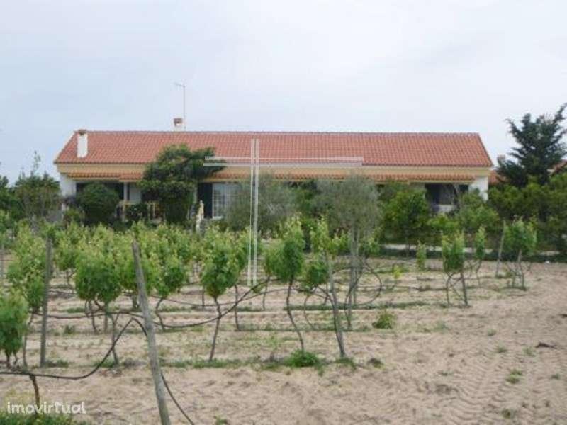 Quintas e herdades para comprar, Pinhal Novo, Setúbal - Foto 34