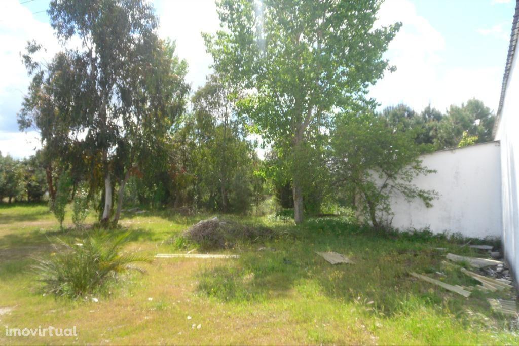 Armazém para arrendar, Castelo Branco - Foto 7