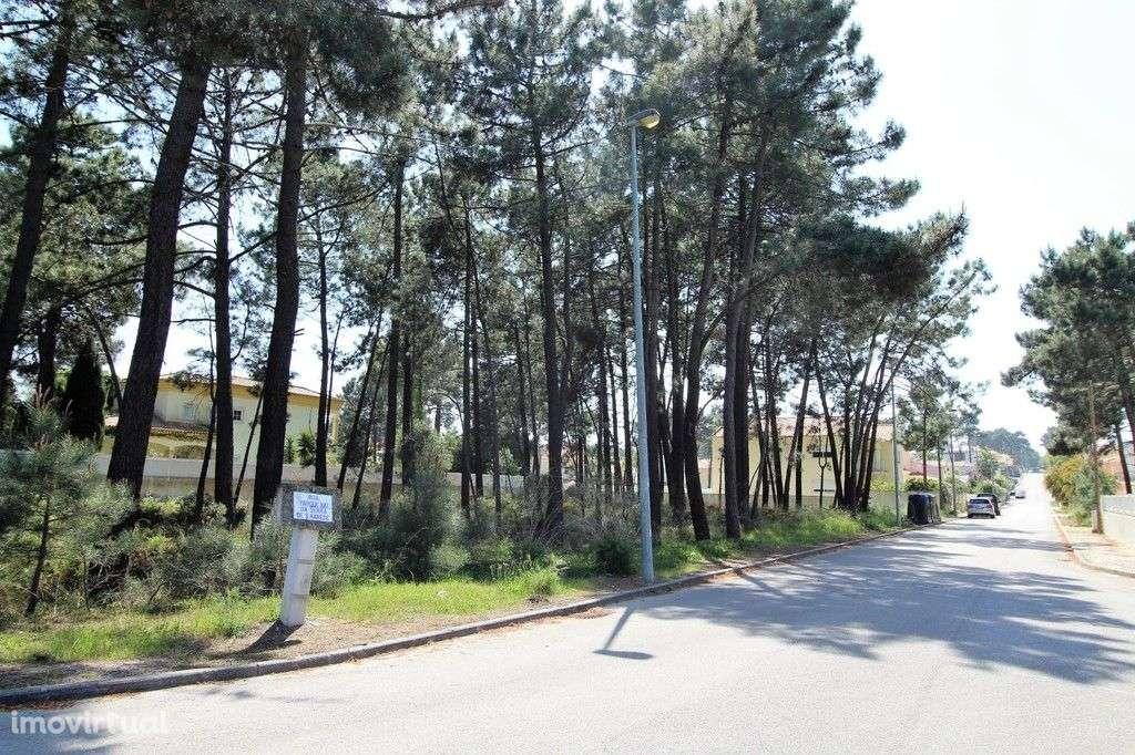 Terreno para comprar, Corroios, Seixal, Setúbal - Foto 4