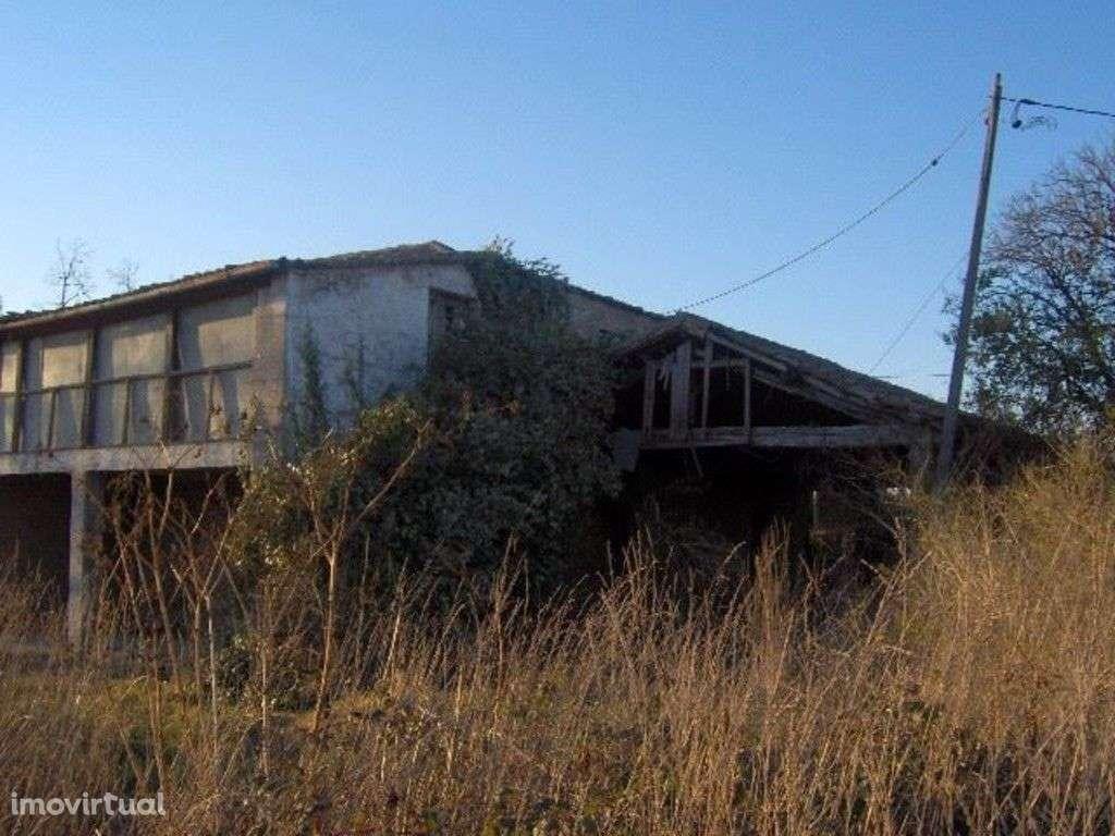 Quintas e herdades para comprar, Palmeira, Braga - Foto 9