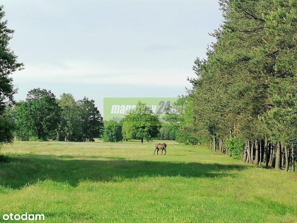Działka, 10 700 m², Malanów