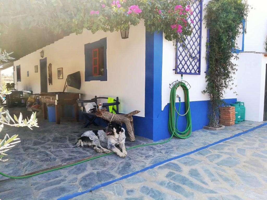 Quintas e herdades para comprar, Santo António (Capelins), Évora - Foto 51