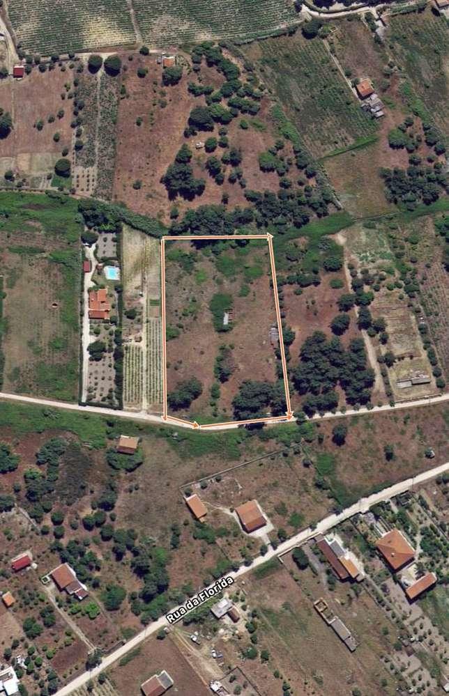 Terreno para comprar, Cartaxo e Vale da Pinta, Santarém - Foto 2