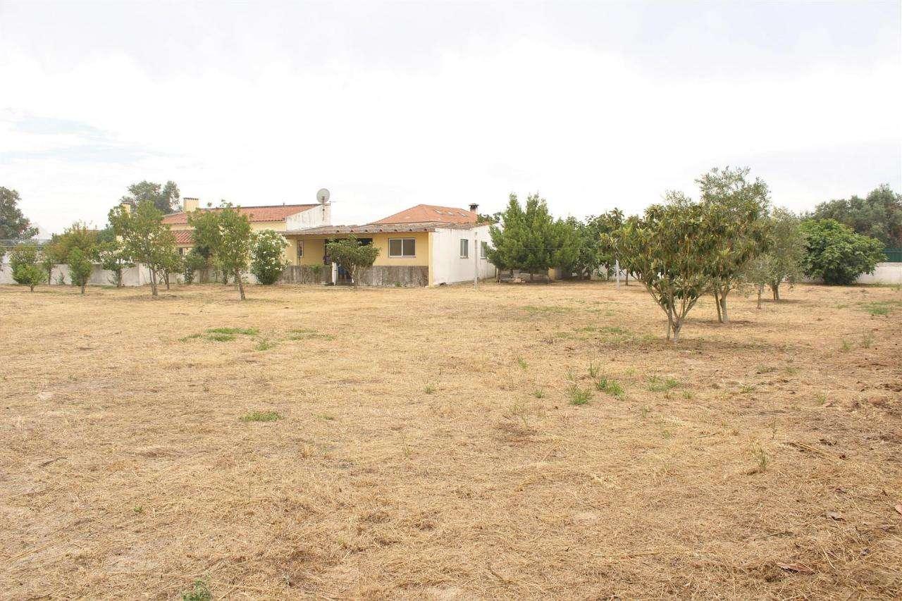 Terreno para comprar, Gâmbia-Pontes-Alto Guerra, Setúbal - Foto 9