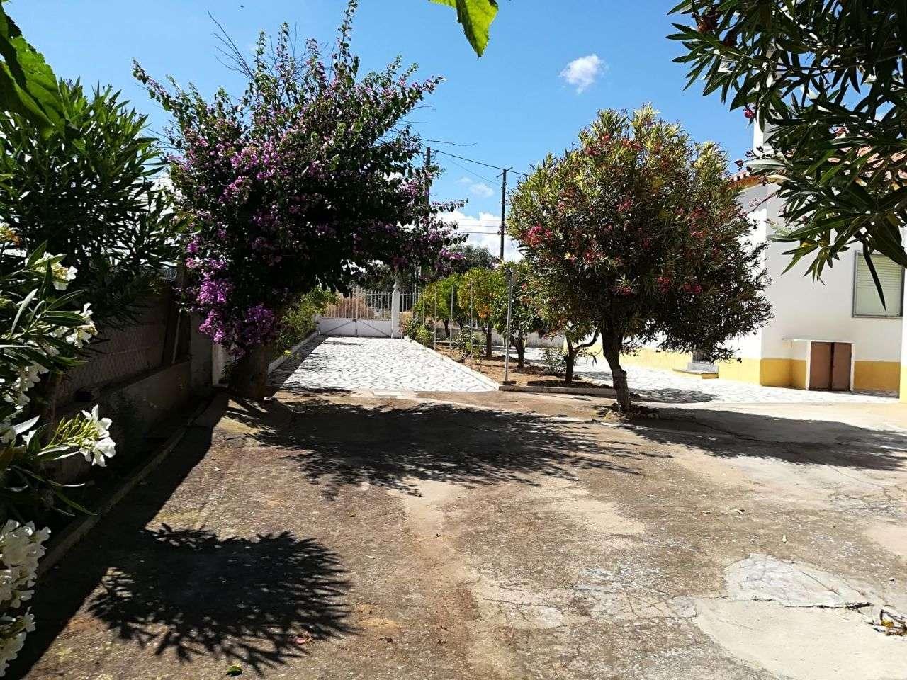 Quintas e herdades para comprar, Alvalade, Setúbal - Foto 4