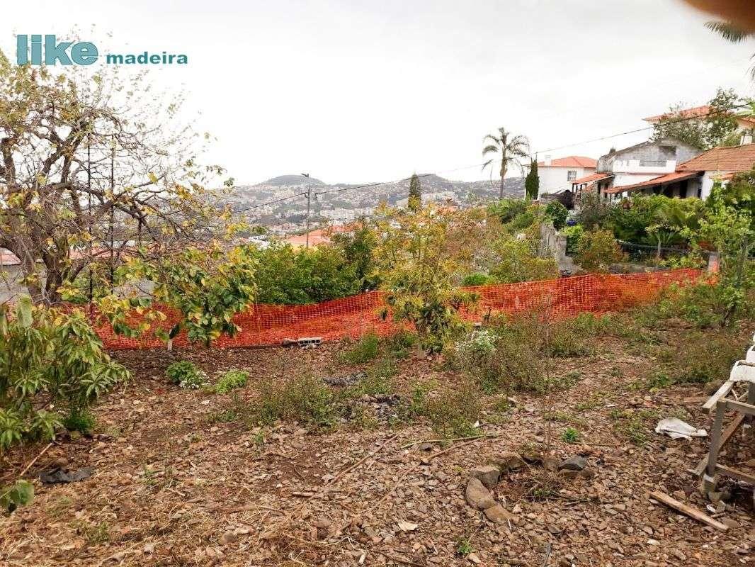 Terreno para comprar, Imaculado Coração Maria, Ilha da Madeira - Foto 4