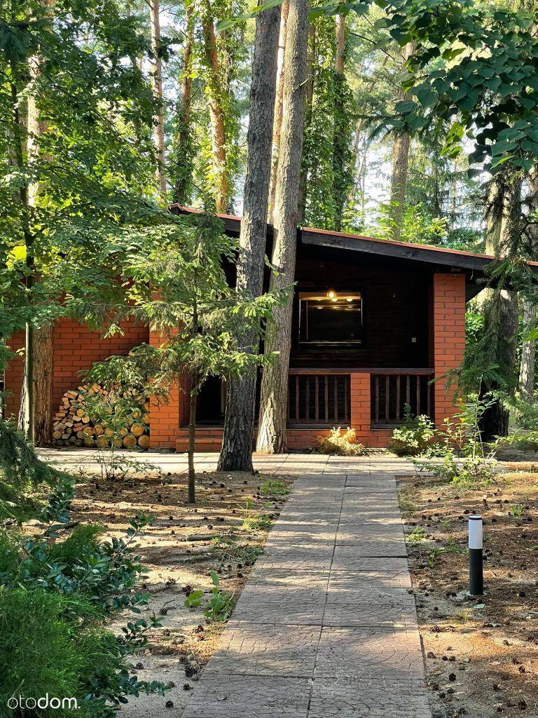 Dom letniskowy na leśnej działce nad Narwią