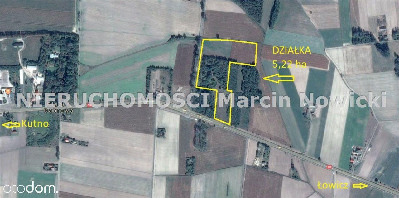 Działka, 52 217 m², Plecka Dąbrowa