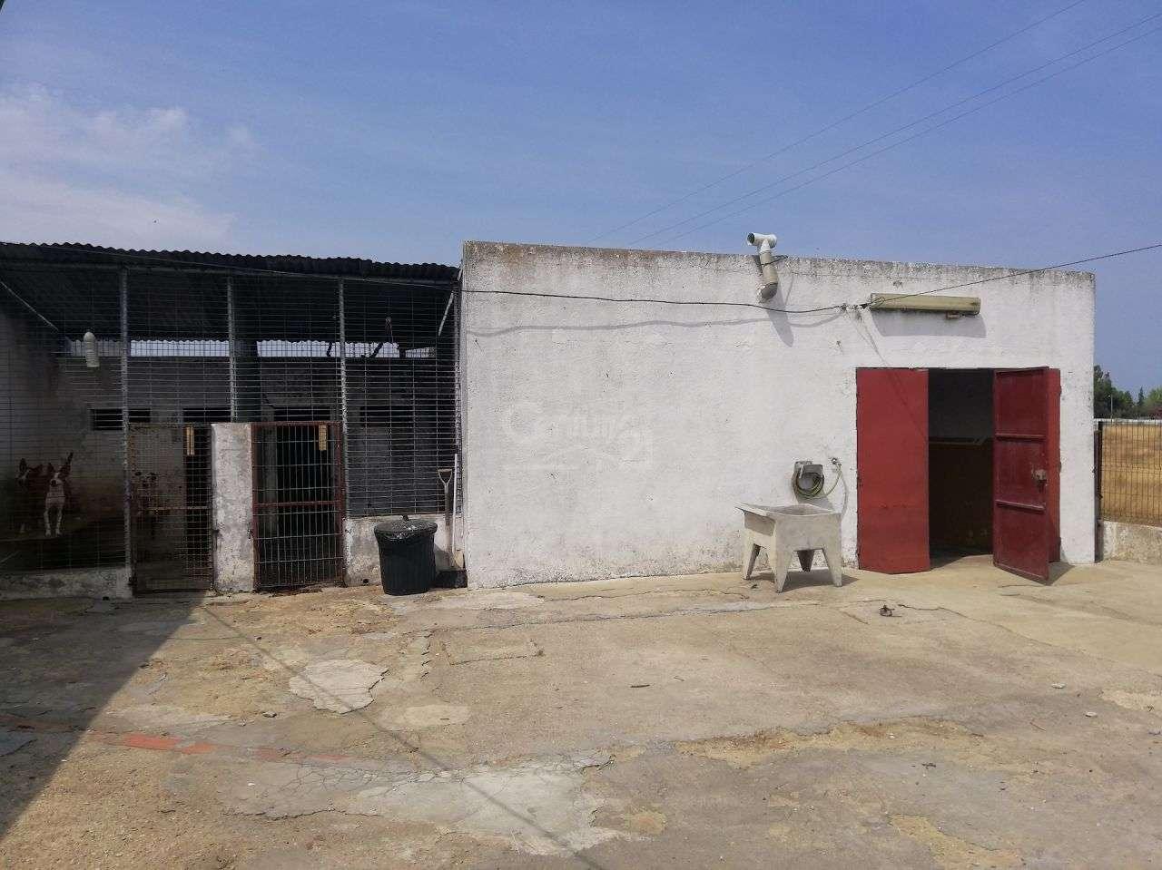 Moradia para comprar, Alcochete - Foto 6