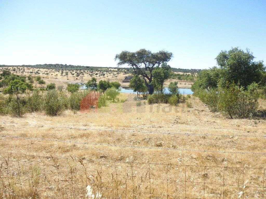 Quintas e herdades para comprar, Almodôvar e Graça dos Padrões, Beja - Foto 10