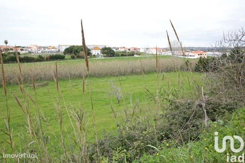 Terreno para comprar, A dos Cunhados e Maceira, Torres Vedras, Lisboa - Foto 5