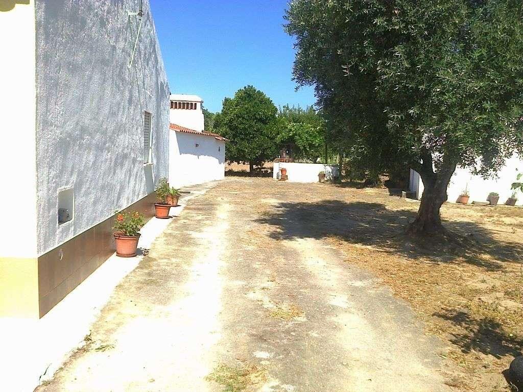 Quintas e herdades para comprar, Ponte de Sor, Tramaga e Vale de Açor, Portalegre - Foto 4