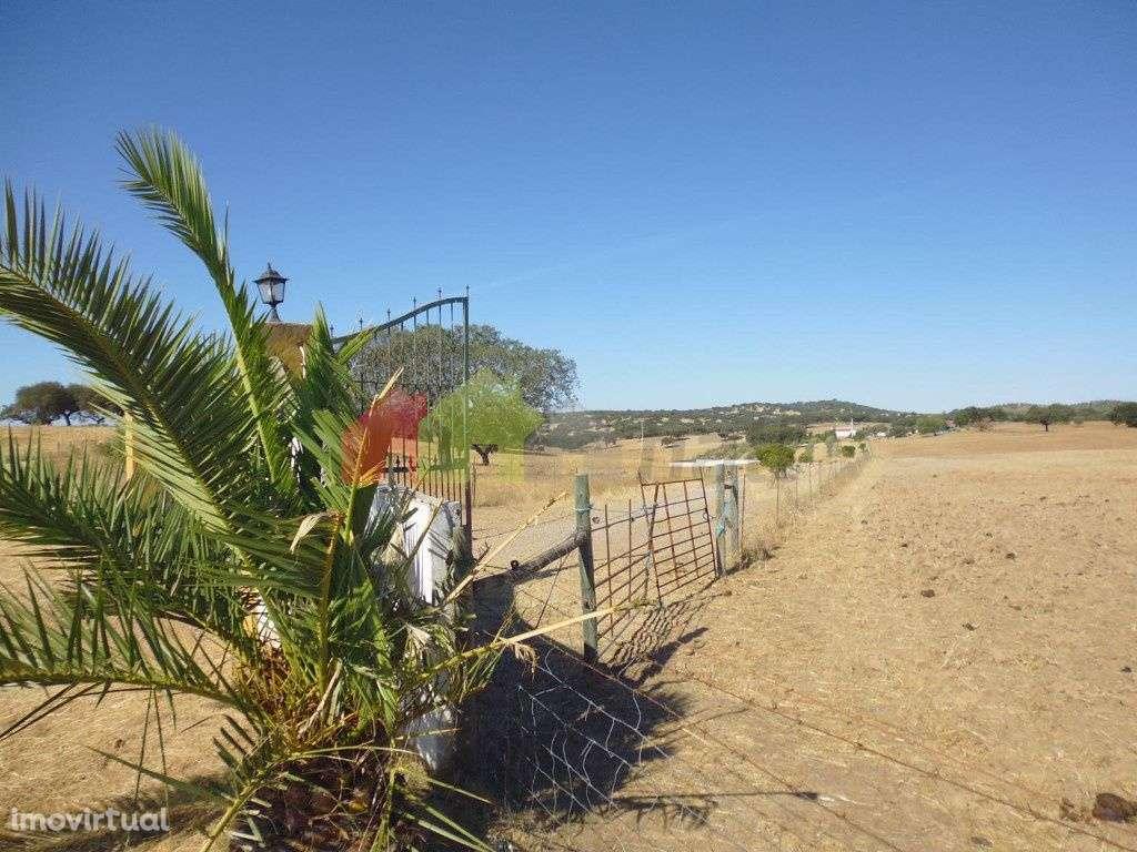 Quintas e herdades para comprar, Vila Verde de Ficalho, Beja - Foto 25