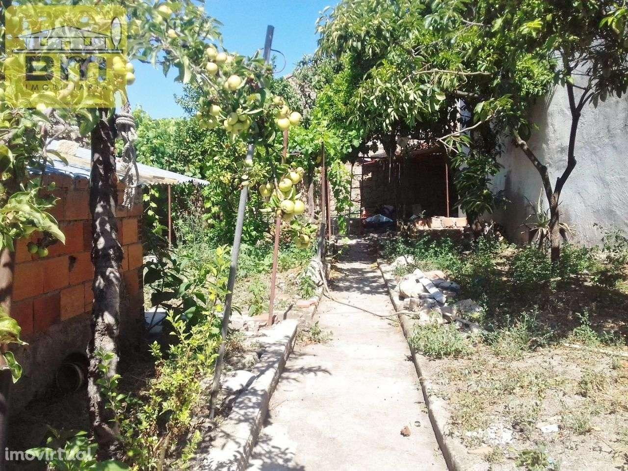 Moradia para comprar, Idanha-a-Nova e Alcafozes, Idanha-a-Nova, Castelo Branco - Foto 20