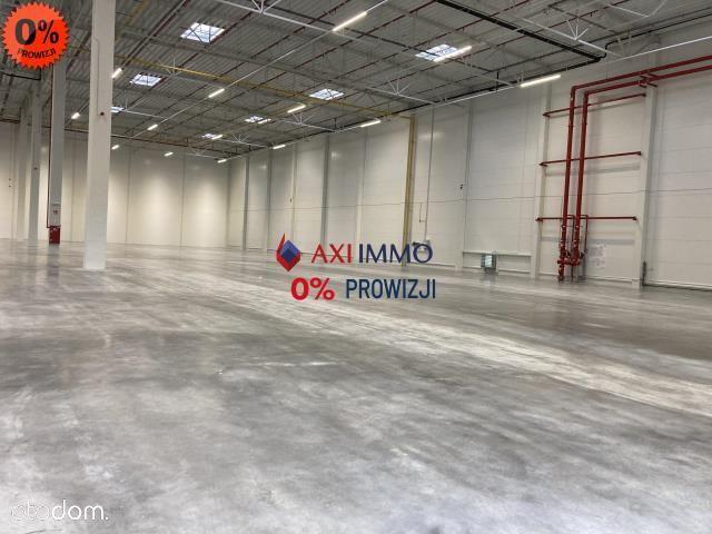 Magazyn / hala Zakopianka 1500 m2
