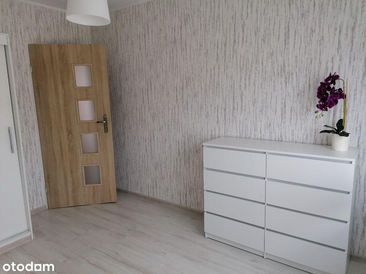 wynajem mieszkanie 3 pokojowe
